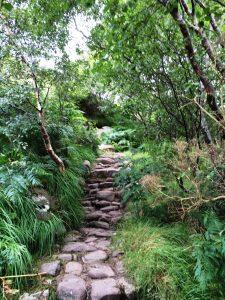 path-up