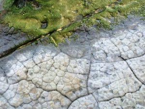 rock-pattern